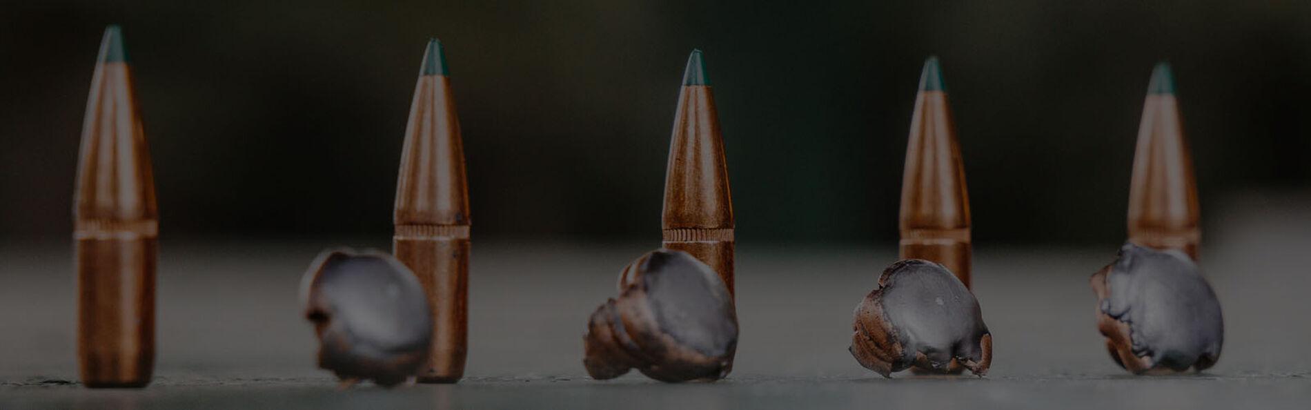 Core-Lokt bullet next to it's shot bullet